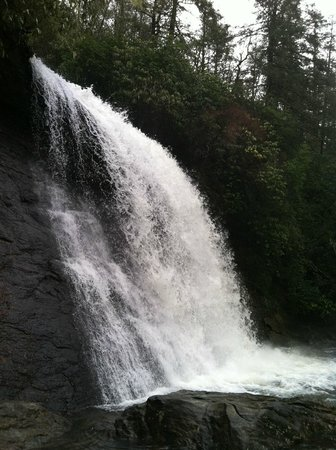 Laurelwood Inn : One of the nearby falls you can hike.