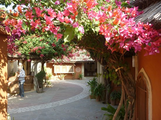 Apani Dhani Eco-Lodge : giardino