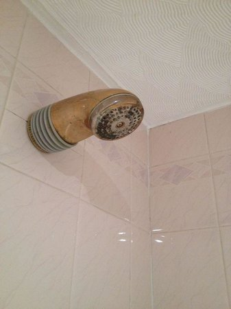 The Grant Arms Hotel: Limescaled shower