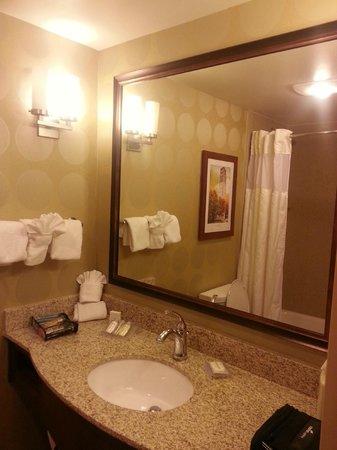 Hilton Garden Inn Ann Arbor: Bathroom