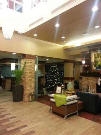 Hilton Garden Inn Ann Arbor: Lobby