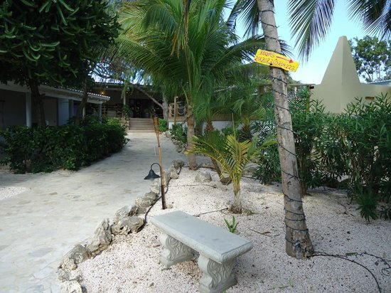 Caribbean Club Bonaire: Just a few steps from dive shop and bar