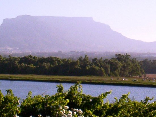 De Grendel Restaurant: view from the terrace where you can test wine