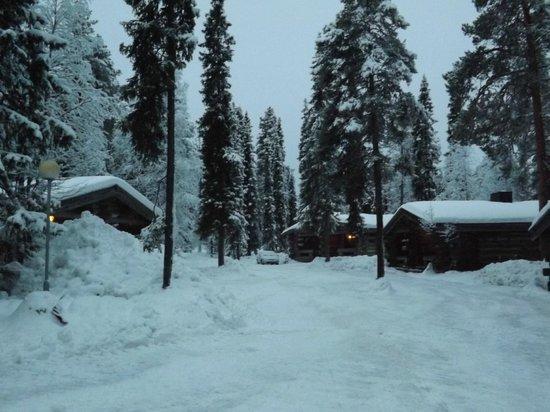 Lapland Hotel Akashotelli : area surrounding cabin