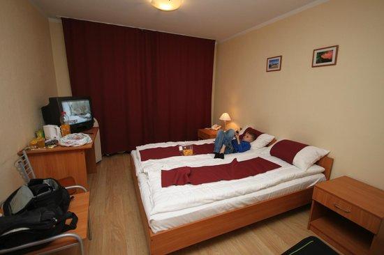 Conference Hotel Tomo: Room