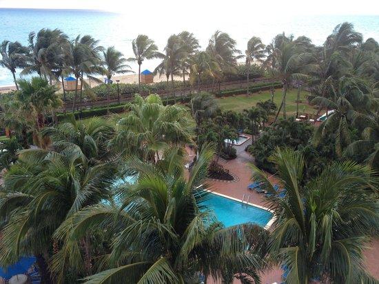 Four Points by Sheraton Miami Beach : Nice pool area on the beach