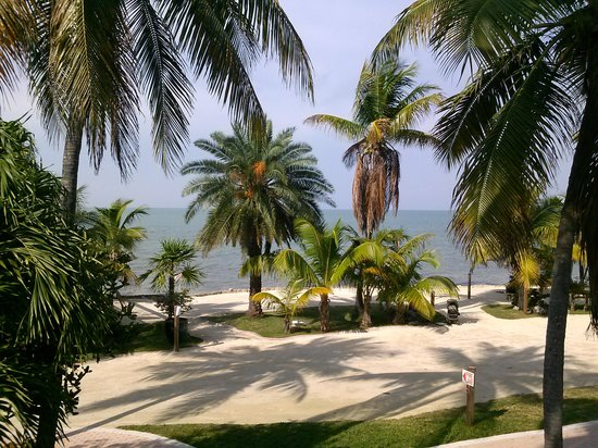 Lime Tree Bay Resort: what a view from the tree house deck!