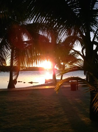 Lime Tree Bay Resort: breathtaking sunsets!!