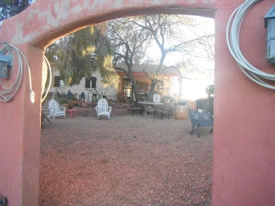 Ana's Casa de Saguaro: Anna's Garden