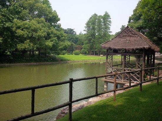Xi Jiao Hotel: River through the property