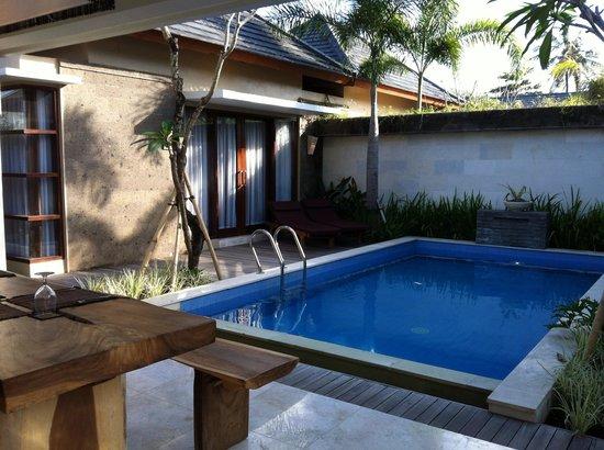 Lumbini Luxury Villas and Spa: Good sized pool