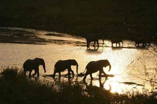 Khandizwe River Lodge : Sunset, genomen langs het zwembad