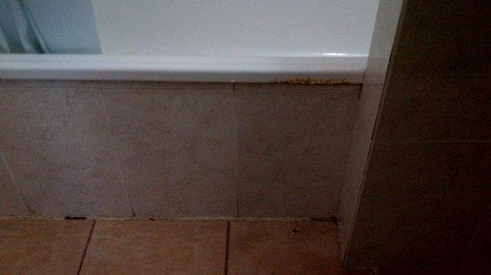 Parque Cattleya Apartments: Rusty dirty bath