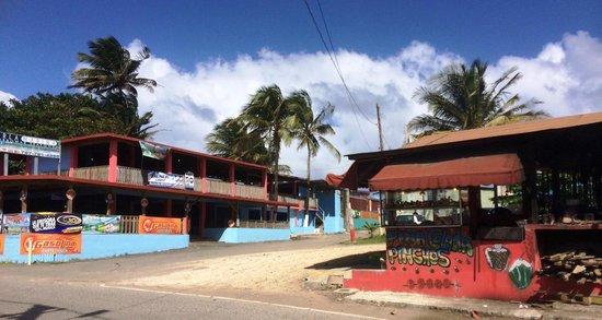 The Tarpon's Nest Lodge: Pinones area restaurants