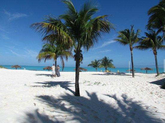 Treasure Cay Beach, Marina & Golf Resort : Treasure Cay Beach 3.5 miles of white powder