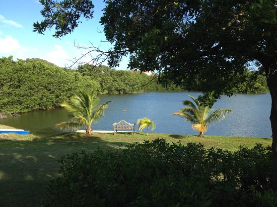 Antigua's Yepton Estate Cottages : View of the lagoon from our cottage