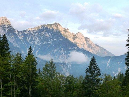 Rifugio Alpino Luigi Zacchi: Magnifiche alpi....