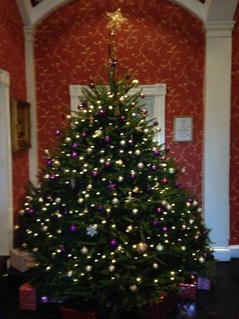 The Bannatyne Hotel Darlington: Beautiful tree to welcome guests at Christmas!