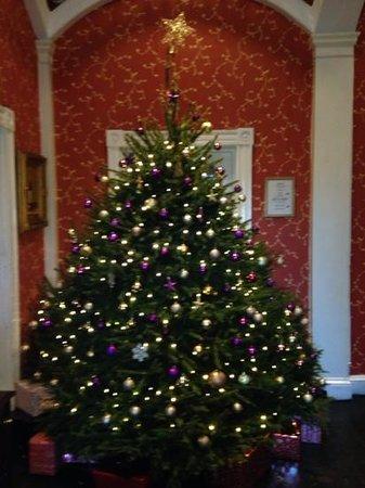 Bannatyne Hotel Darlington: Beautiful tree to welcome guests at Christmas!