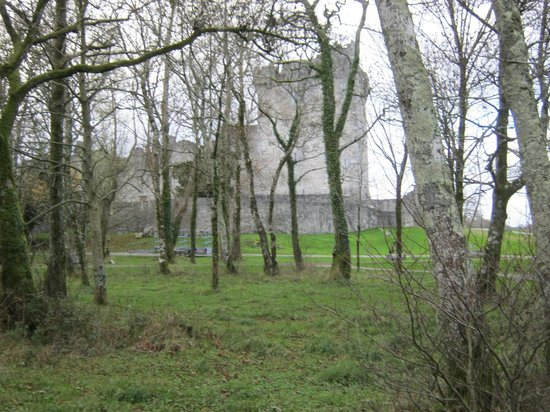 Ross Castle: View through the woods