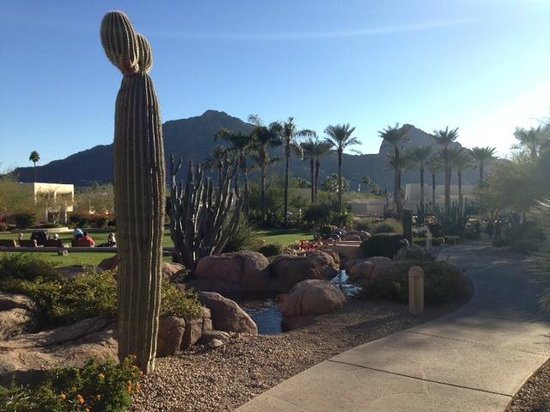 JW Marriott Scottsdale Camelback Inn Resort & Spa: Wonderful views, beautifully kept grounds