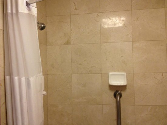Drury Plaza Hotel St. Louis Chesterfield : Shower - great water pressure