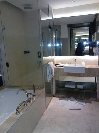 Hotel Royal Orchid, Jaipur : bagno