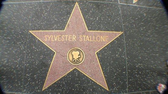 Hollywood City Inn : På walk of fame