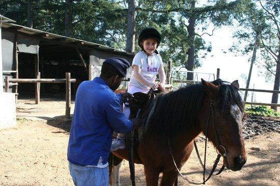 Champagne Castle Hotel: Horseback riding for beginners