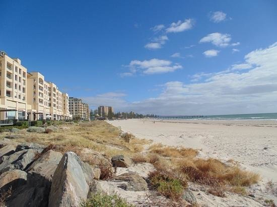 Oaks Plaza Pier Apartment Hotel: Glenelg Beach in front of the hotel