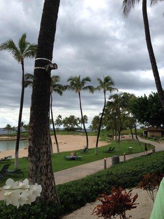 Marriott Ko Olina Beach Club : Lagoon front
