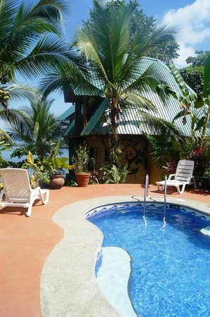 Cabinas Jimenez : small poolside area