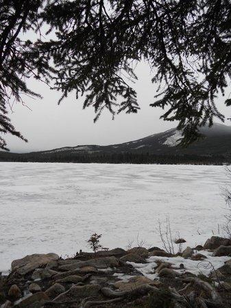 Pyramid and Patricia Lakes : Frozen Lake