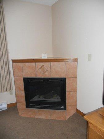 Coast Sundance Lodge: Gas Fire Place