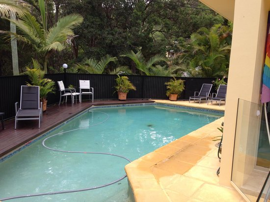 Noosa Cove Holiday Apartments : Apartment's pool