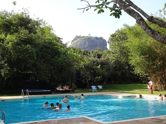 Sigiriya Village Hotel: The pool