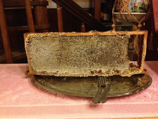 La Pitraia: miele in favo