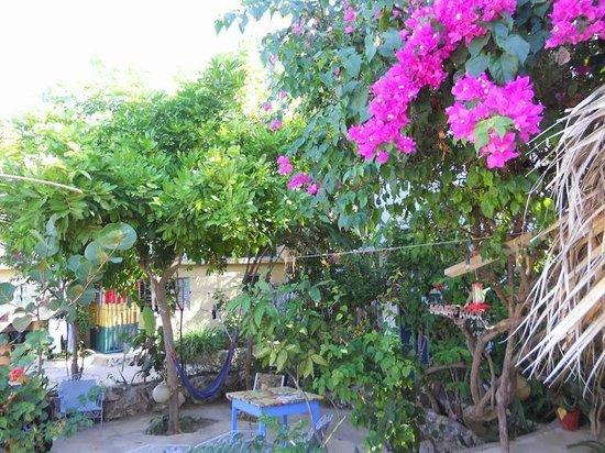 Irie Rest Guest House: Patio