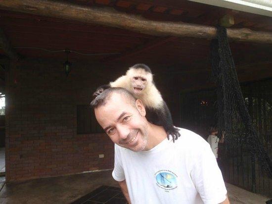 Monkey Lodge Panama: Papaye, affectueuse à souhait