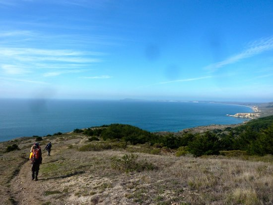 Point Reyes Hiking Trails: View from Coast Trail