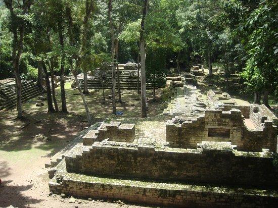 Gray Line Guatemala: Copan