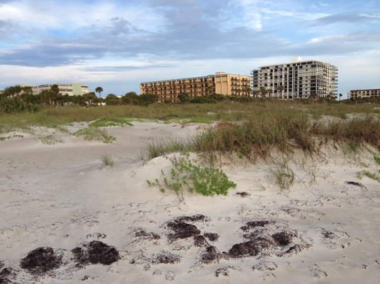 DoubleTree by Hilton Hotel Cocoa Beach Oceanfront: View from beach to Doubletree, looking back from sunrise