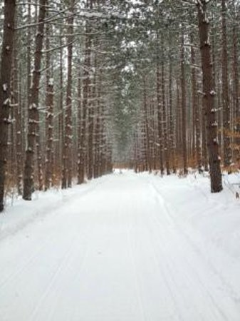 Crooked River Lodge: snowmobile trail