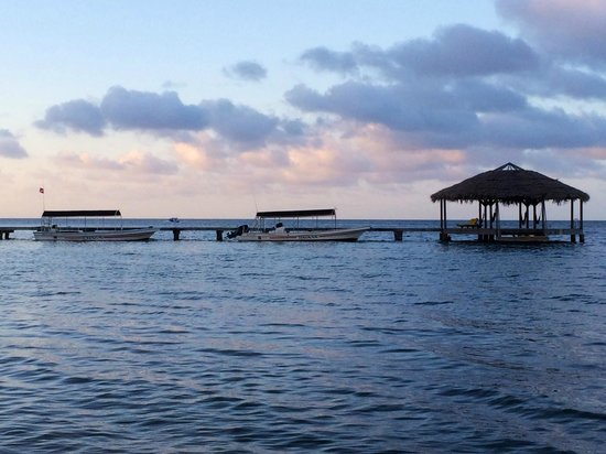 The Resort at Palmetto Bay: The Dock with the dive boats