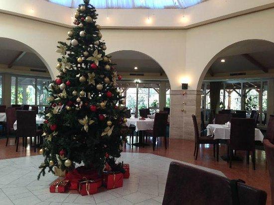 Rogner Hotel Tirana: sala