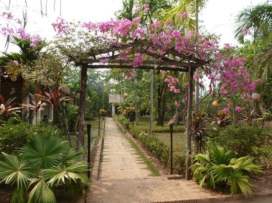 Golden Sunrise Hotel: jardines