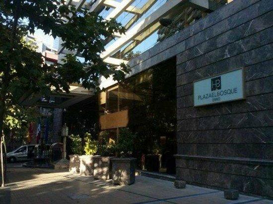 Hotel Plaza El Bosque Ebro: ENTRADA