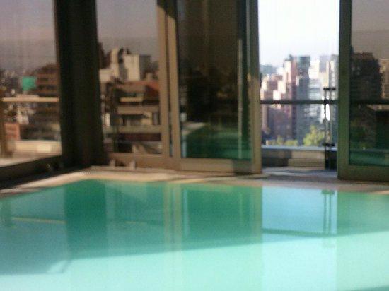 Hotel Plaza El Bosque Ebro: PISCINA COBERTA