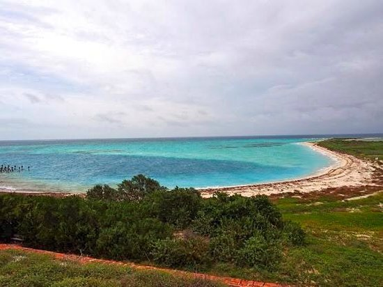 Bush Key In The Dry Tortugas Picture Of Dry Tortugas National Park Key West Tripadvisor