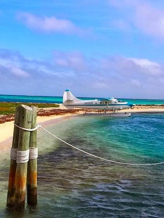 Dry Tortugas National Park: the seaplane that brings people to the Dry Tortugas, the alternative to the Yankee Freedom catam